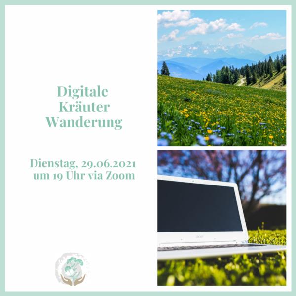 Digitale Kräuterwanderung Juni 2021