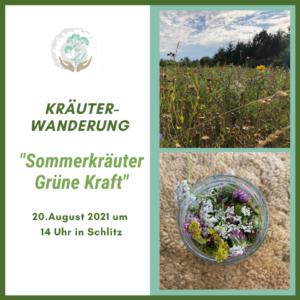 Kräuterwanderung Sommerkräuter, grüne Kraft