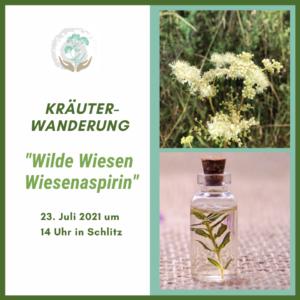 Kräuterwanderung Wilde Wiesen - Wiesenaspirin