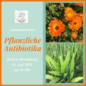 Workshop Pflanzliche Antibiotika
